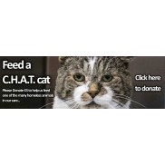 Feed a cat