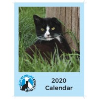 SALE: REDUCED TO £2.50 - Celia Hammond 2020 Cat Calendar