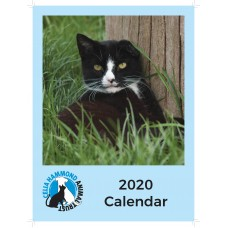 Celia Hammond 2020 Cat Calendar