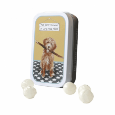 NEW: The Little Dog Laughed Best Things Goldendoodle Mint Tin