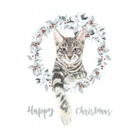 Garland Tabby Christmas Cards 10 pack