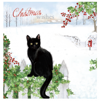 Christmas Cat Card 10 Pack