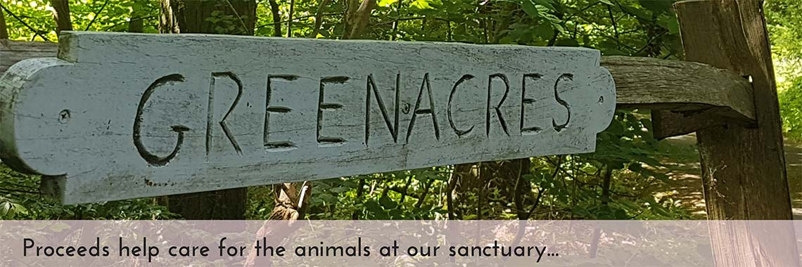 Our Sanctuary